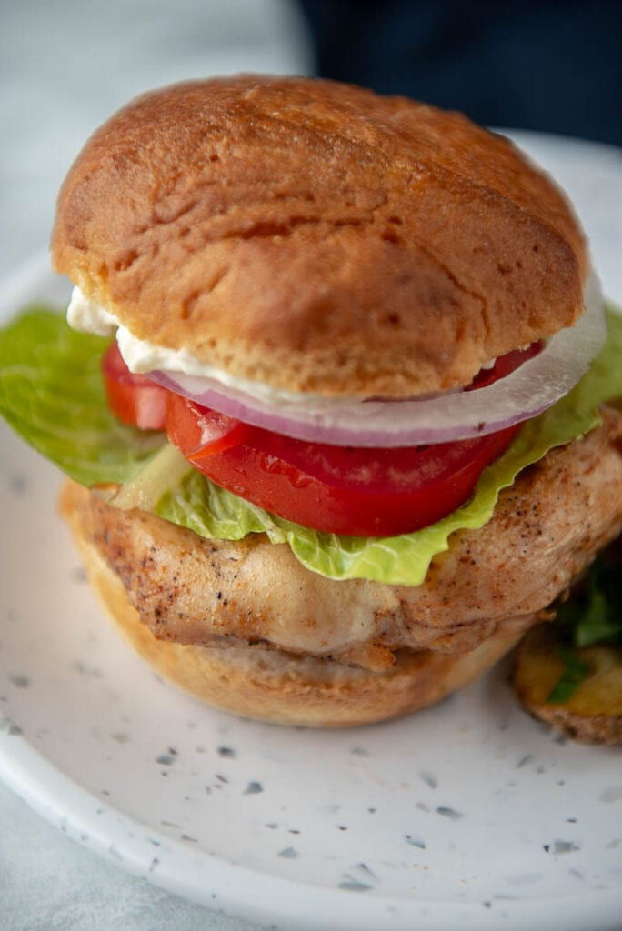grilled chicken on bun with tomato, lettuce, onion and mayo